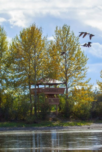 Nechako Migratory Bird Sanctuary